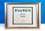 2011年福布斯中国潜力企业榜排名第64名