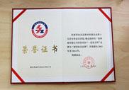 第九届知名品牌授权证书荣誉证书